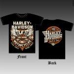 Harley-davidson eagle №2